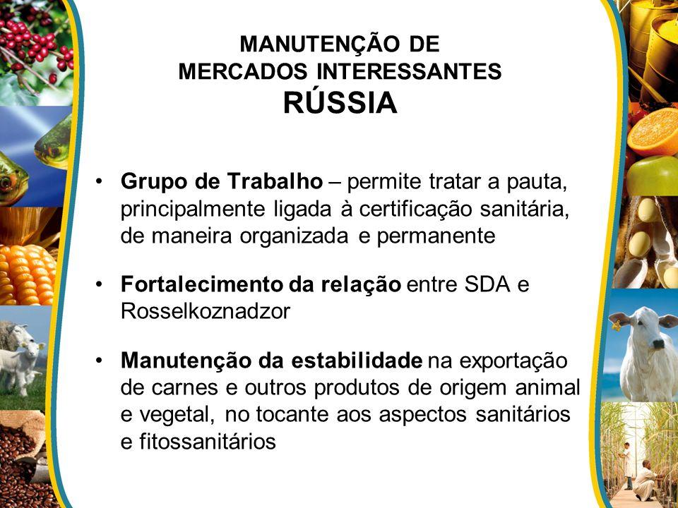 MANUTENÇÃO DE MERCADOS INTERESSANTES RÚSSIA Grupo de Trabalho – permite tratar a pauta, principalmente ligada à certificação sanitária, de maneira org