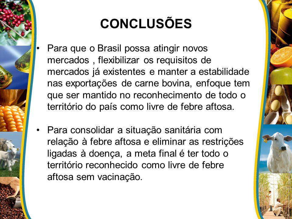 CONCLUSÕES Para que o Brasil possa atingir novos mercados, flexibilizar os requisitos de mercados já existentes e manter a estabilidade nas exportaçõe