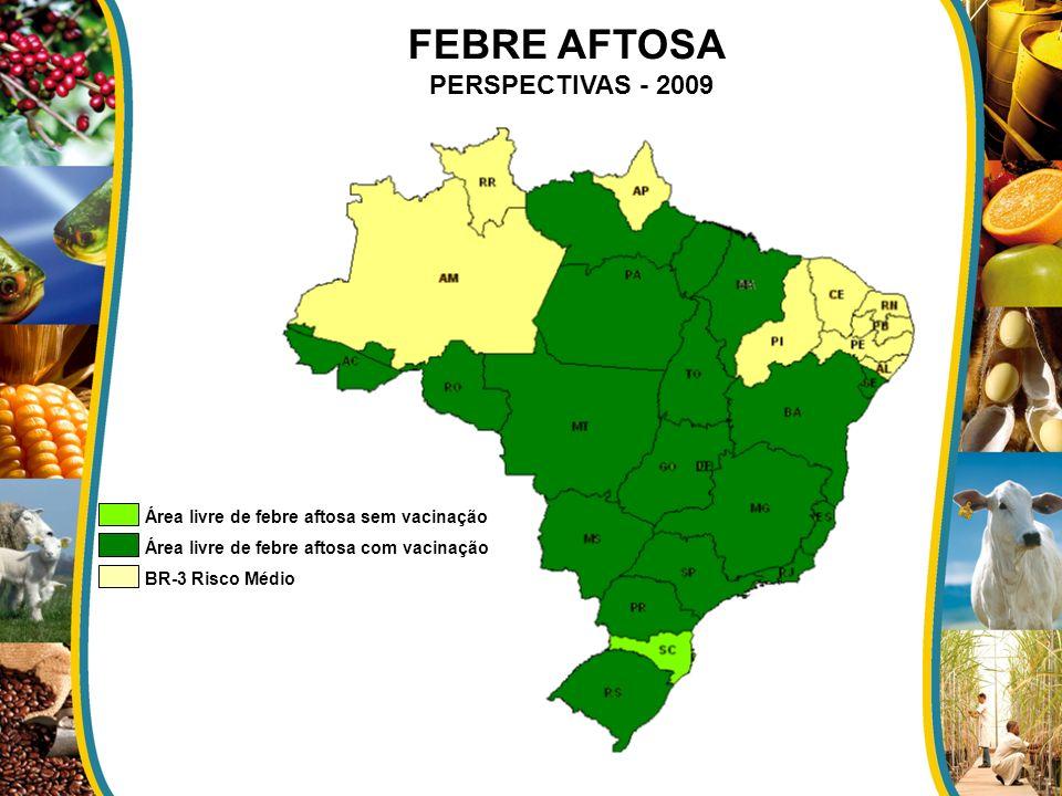 Área livre de febre aftosa sem vacinação Área livre de febre aftosa com vacinação BR-3 Risco Médio FEBRE AFTOSA PERSPECTIVAS - 2009