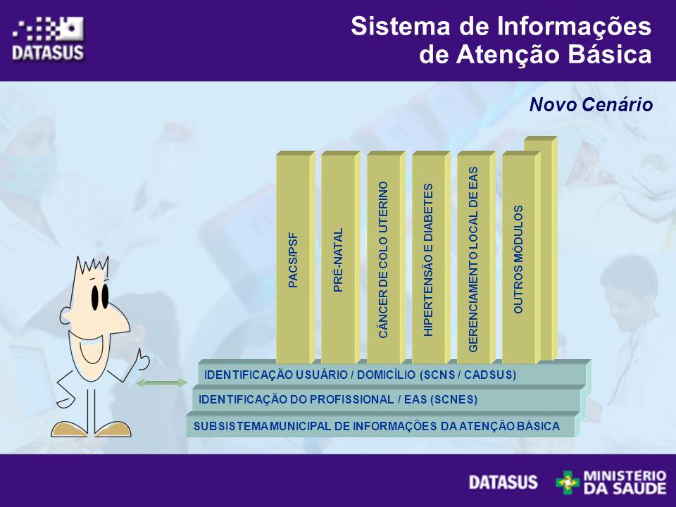 Novo Cenário Sistema de Informações de Atenção Básica IDENTIFICAÇÃO USUÁRIO / DOMICÍLIO (SCNS / CADSUS) IDENTIFICAÇÃO DO PROFISSIONAL / EAS (SCNES) SU