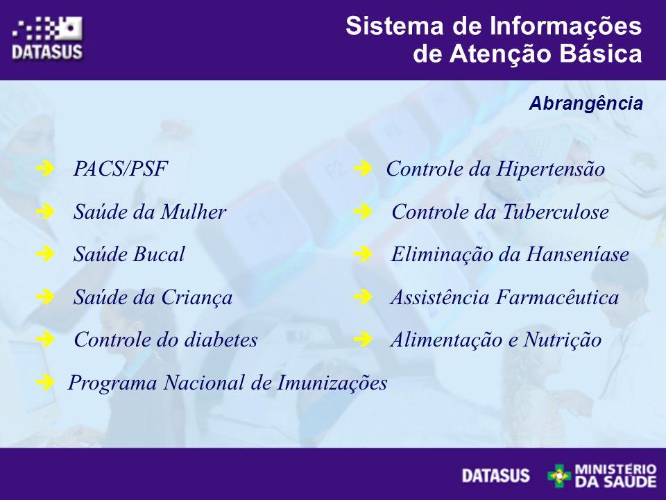 PACS/PSF Saúde da Mulher Saúde Bucal Saúde da Criança Controle do diabetes Programa Nacional de Imunizações Controle da Hipertensão Controle da Tuberc