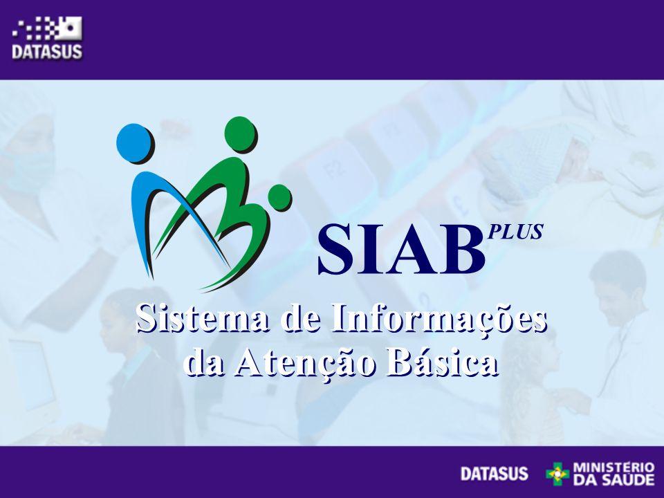 Sistema de Informações da Atenção Básica SIAB PLUS