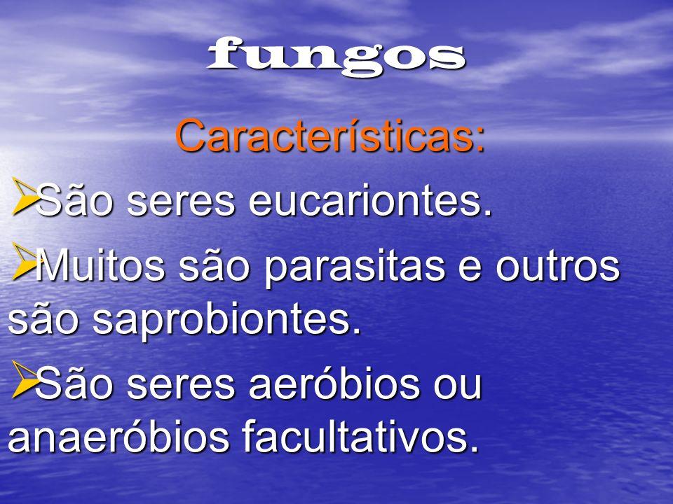 fungos Características: São seres eucariontes. São seres eucariontes. Muitos são parasitas e outros são saprobiontes. Muitos são parasitas e outros sã