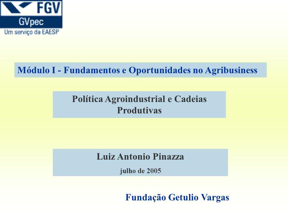 Política Agroindustrial e Cadeias Produtivas Luiz Antonio Pinazza julho de 2005 Fundação Getulio Vargas Módulo I - Fundamentos e Oportunidades no Agri