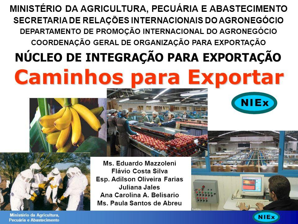 MINISTÉRIO DA AGRICULTURA, PECUÁRIA E ABASTECIMENTO SECRETARIA DE RELAÇÕES INTERNACIONAIS DO AGRONEGÓCIO DEPARTAMENTO DE PROMOÇÃO INTERNACIONAL DO AGRONEGÓCIO COORDENAÇÃO GERAL DE ORGANIZAÇÃO PARA EXPORTAÇÃO NÚCLEO DE INTEGRAÇÃO PARA EXPORTAÇÃO Caminhos para Exportar Ministério da Agricultura, Pecuária e Abastecimento Ms.