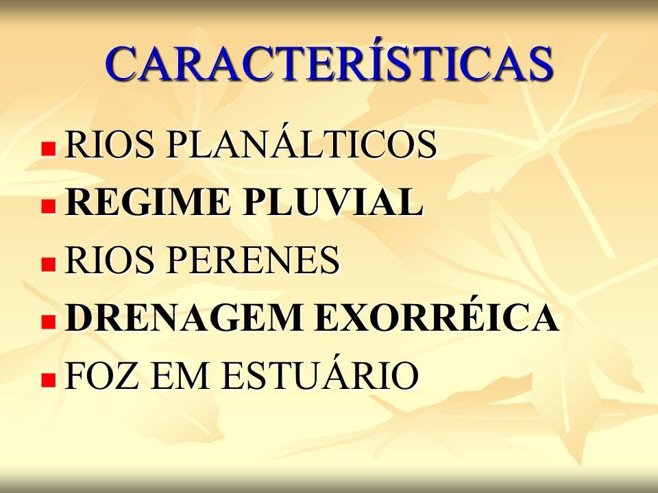 CARACTERÍSTICAS RIOS PLANÁLTICOS RIOS PLANÁLTICOS REGIME PLUVIAL REGIME PLUVIAL RIOS PERENES RIOS PERENES DRENAGEM EXORRÉICA DRENAGEM EXORRÉICA FOZ EM