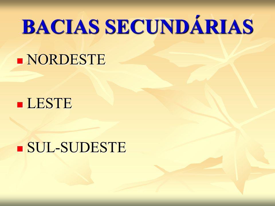 BACIAS SECUNDÁRIAS NORDESTE NORDESTE LESTE LESTE SUL-SUDESTE SUL-SUDESTE