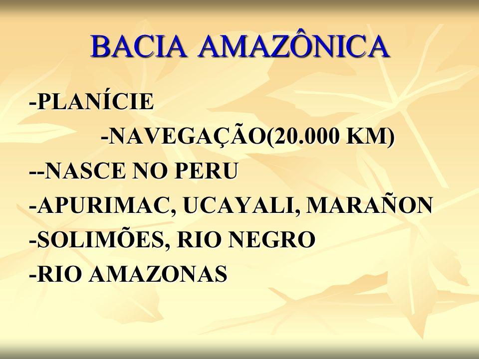 -PLANÍCIE -NAVEGAÇÃO(20.000 KM) --NASCE NO PERU -APURIMAC, UCAYALI, MARAÑON -SOLIMÕES, RIO NEGRO -RIO AMAZONAS