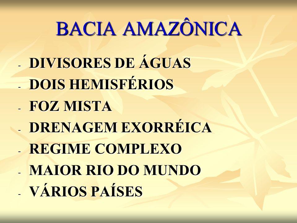BACIA AMAZÔNICA - DIVISORES DE ÁGUAS - DOIS HEMISFÉRIOS - FOZ MISTA - DRENAGEM EXORRÉICA - REGIME COMPLEXO - MAIOR RIO DO MUNDO - VÁRIOS PAÍSES