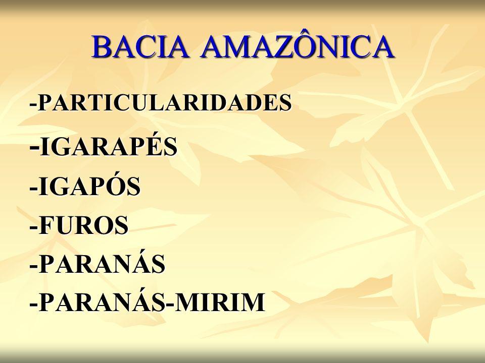 BACIA AMAZÔNICA -PARTICULARIDADES - IGARAPÉS -IGAPÓS-FUROS-PARANÁS-PARANÁS-MIRIM