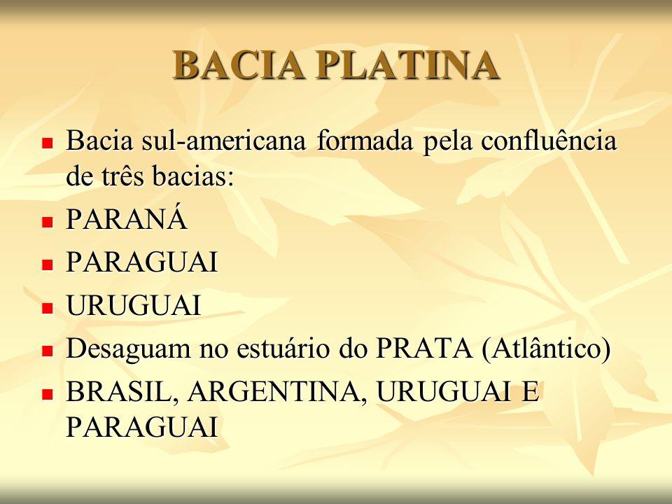 BACIA PLATINA Bacia sul-americana formada pela confluência de três bacias: Bacia sul-americana formada pela confluência de três bacias: PARANÁ PARANÁ