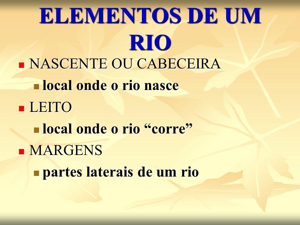 ELEMENTOS DE UM RIO NASCENTE OU CABECEIRA NASCENTE OU CABECEIRA local onde o rio nasce local onde o rio nasce LEITO LEITO local onde o rio corre local