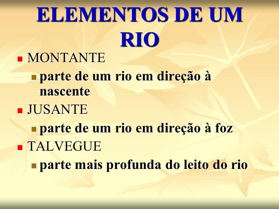 ELEMENTOS DE UM RIO MONTANTE MONTANTE parte de um rio em direção à nascente parte de um rio em direção à nascente JUSANTE JUSANTE parte de um rio em d