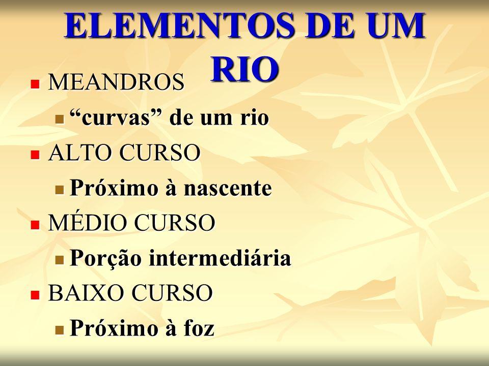 ELEMENTOS DE UM RIO MEANDROS MEANDROS curvas de um rio curvas de um rio ALTO CURSO ALTO CURSO Próximo à nascente Próximo à nascente MÉDIO CURSO MÉDIO