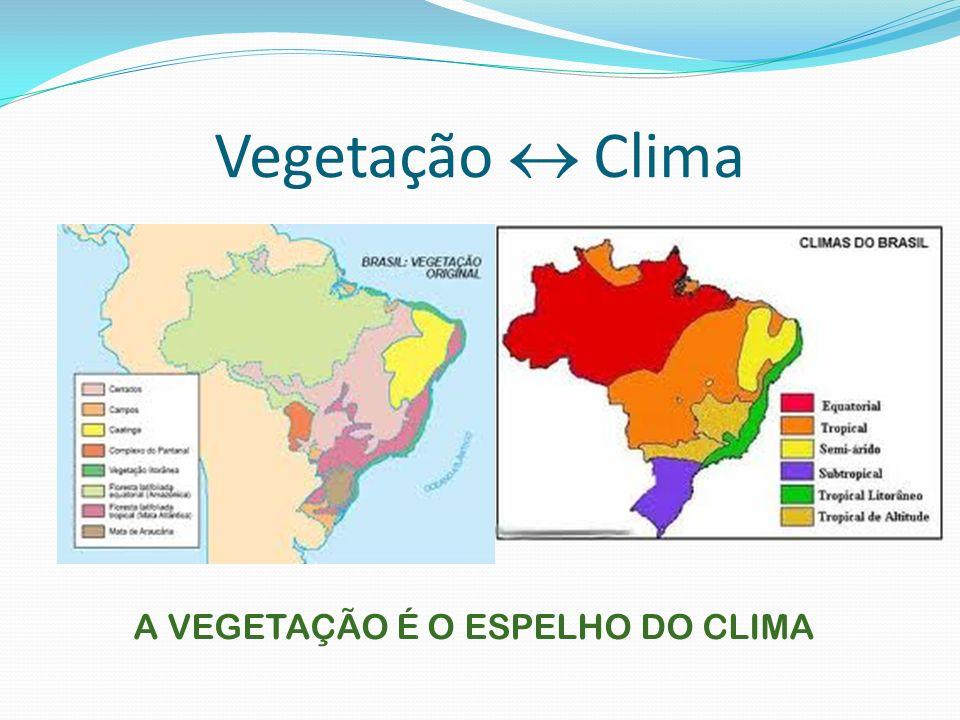 O CLIMA É O FATOR MAIS IMPORTANTE PARA DETERMINAR A COMPOSIÇÃO DA PAISAGEM NATURAL DE QUALQUER LUGAR