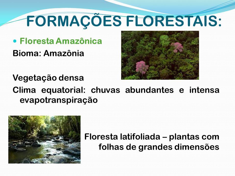 FORMAÇÕES FLORESTAIS: Floresta Amazônica Bioma: Amazônia Vegetação densa Clima equatorial: chuvas abundantes e intensa evapotranspiração Floresta lati