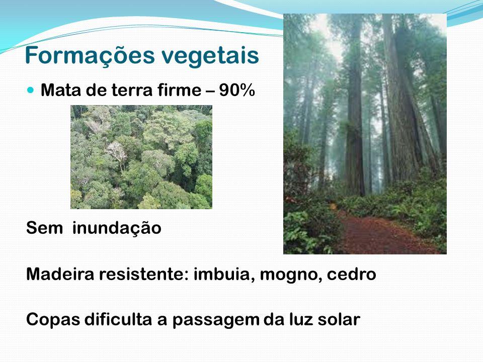 Formações vegetais Mata de terra firme – 90% Sem inundação Madeira resistente: imbuia, mogno, cedro Copas dificulta a passagem da luz solar