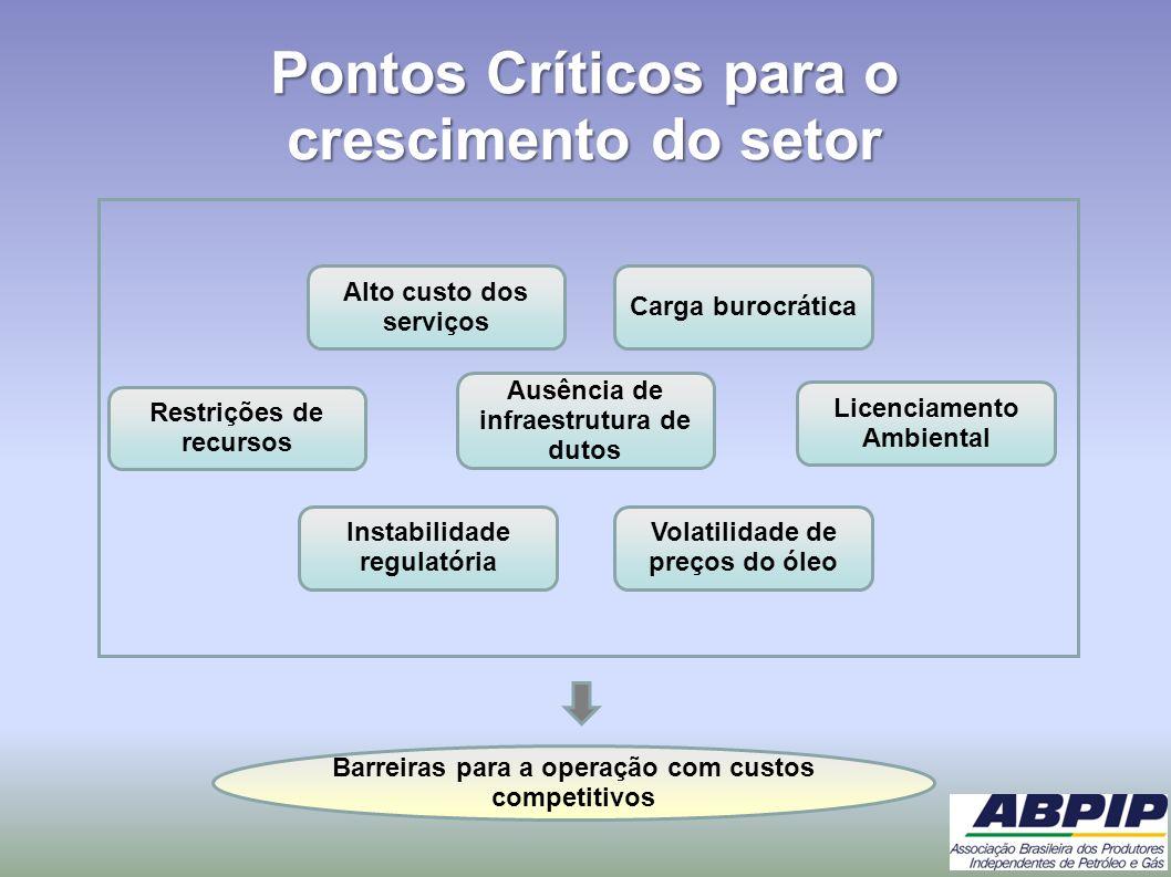 Pontos Críticos para o crescimento do setor Restrições de recursos Alto custo dos serviços Instabilidade regulatória Licenciamento Ambiental Carga bur