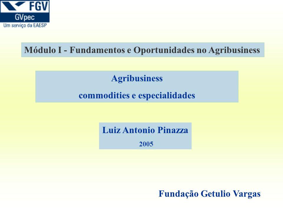 Agribusiness commodities e especialidades Módulo I - Fundamentos e Oportunidades no Agribusiness Fundação Getulio Vargas Luiz Antonio Pinazza 2005