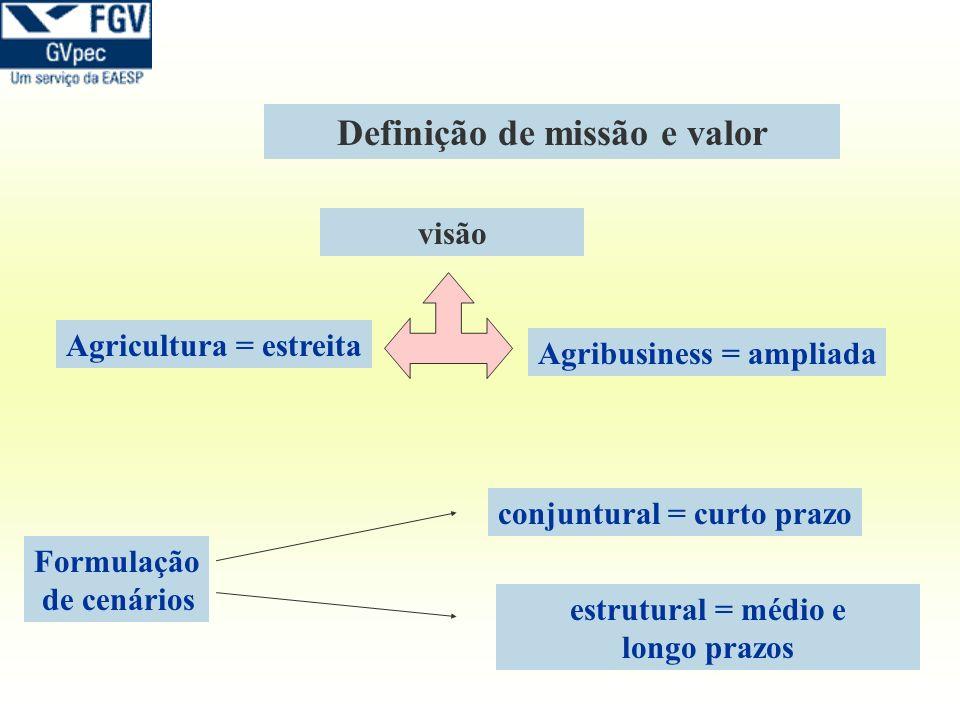 Definição de missão e valor visão Agricultura = estreita Agribusiness = ampliada Formulação de cenários conjuntural = curto prazo estrutural = médio e
