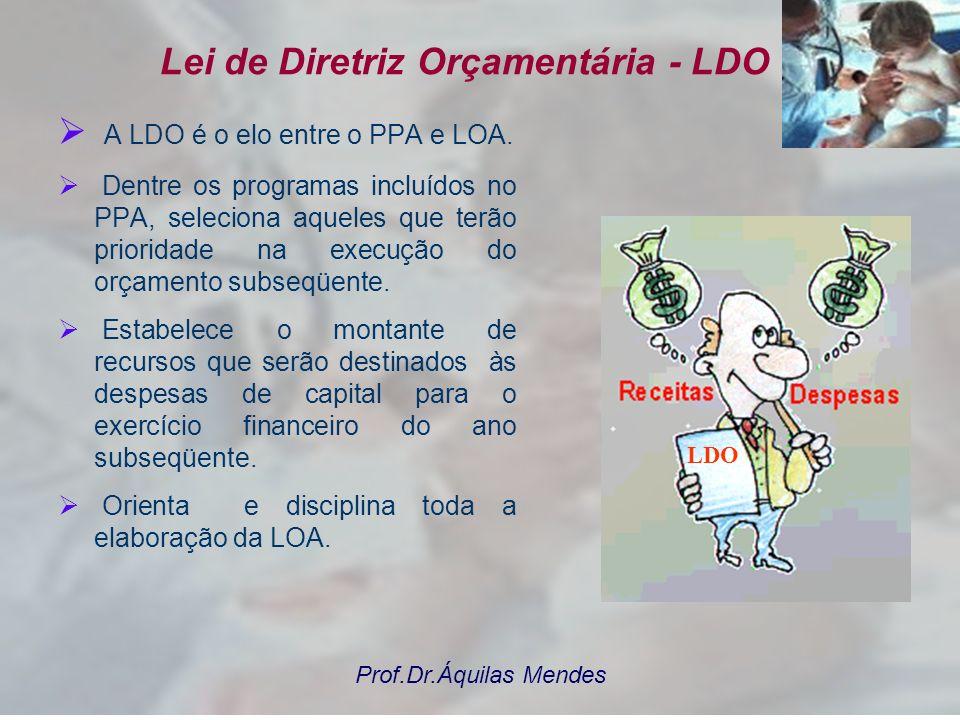 Prof.Dr.Áquilas Mendes O PPA E O PROCESSO ORÇAMENTÁRIO Previsão da evolução dos indicadores e metas por exercício Metas Físicas Unidade de Medida 2010