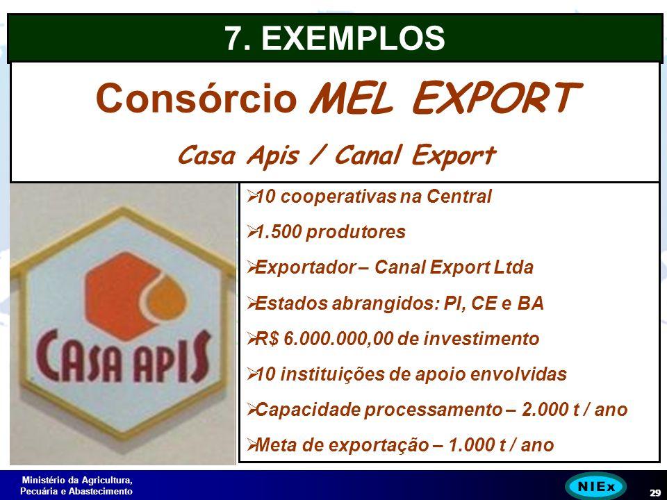 Ministério da Agricultura, Pecuária e Abastecimento 29 10 cooperativas na Central 1.500 produtores Exportador – Canal Export Ltda Estados abrangidos: