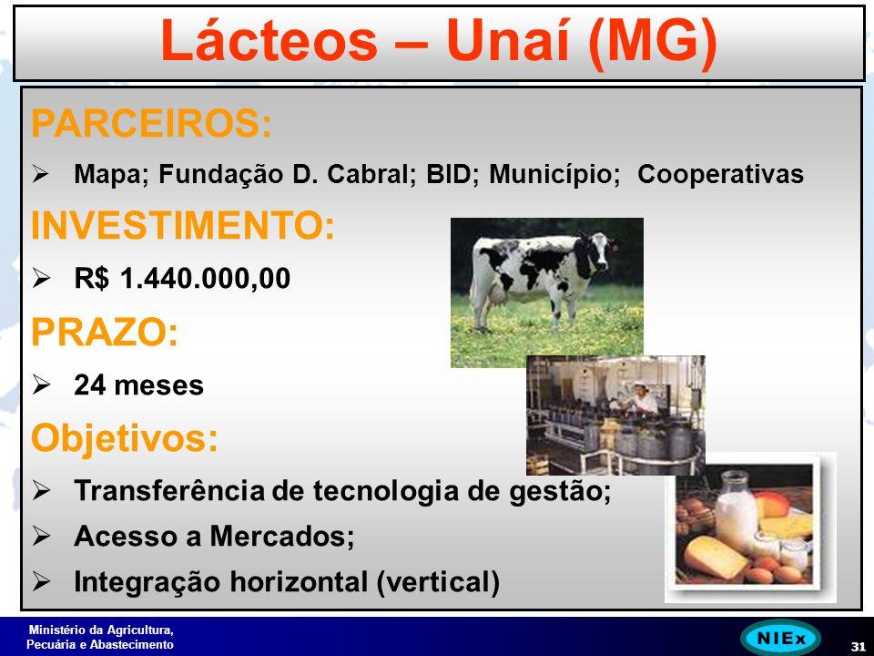 Ministério da Agricultura, Pecuária e Abastecimento 31 Lácteos – Unaí (MG) PARCEIROS: Mapa; Fundação D.