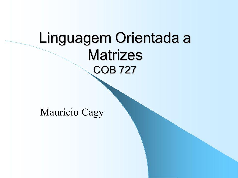 Linguagem Orientada a Matrizes COB 727 Maurício Cagy