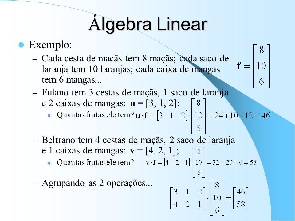 Á lgebra Linear Exemplo: – Cada cesta de maçãs tem 8 maçãs; cada saco de laranja tem 10 laranjas; cada caixa de mangas tem 6 mangas... – Fulano tem 3
