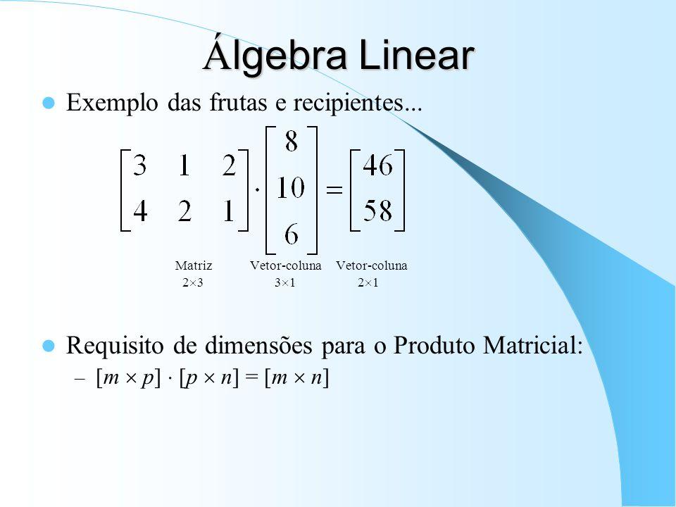 Á lgebra Linear Exemplo das frutas e recipientes... Matriz Vetor-coluna Vetor-coluna 2 3 3 1 2 1 Requisito de dimensões para o Produto Matricial: – [m