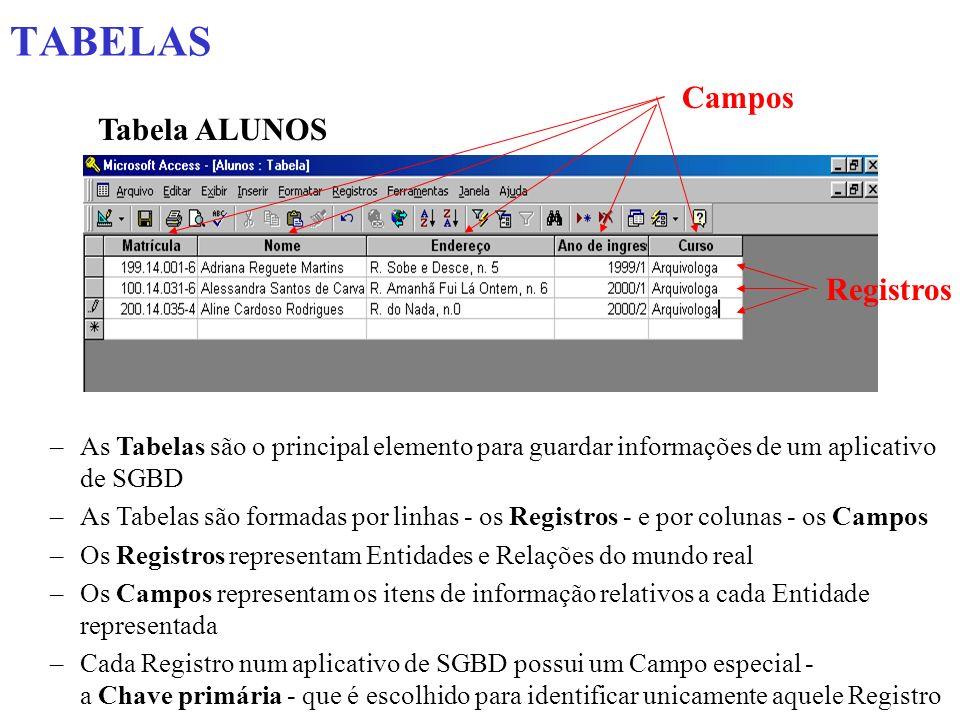 TABELAS Tabela ALUNOS Campos Registros –As Tabelas são o principal elemento para guardar informações de um aplicativo de SGBD –As Tabelas são formadas