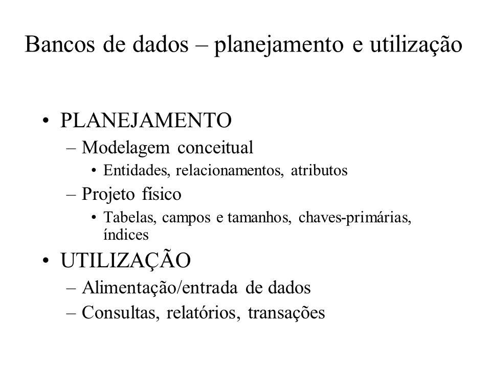 Bancos de dados – planejamento e utilização PLANEJAMENTO –Modelagem conceitual Entidades, relacionamentos, atributos –Projeto físico Tabelas, campos e