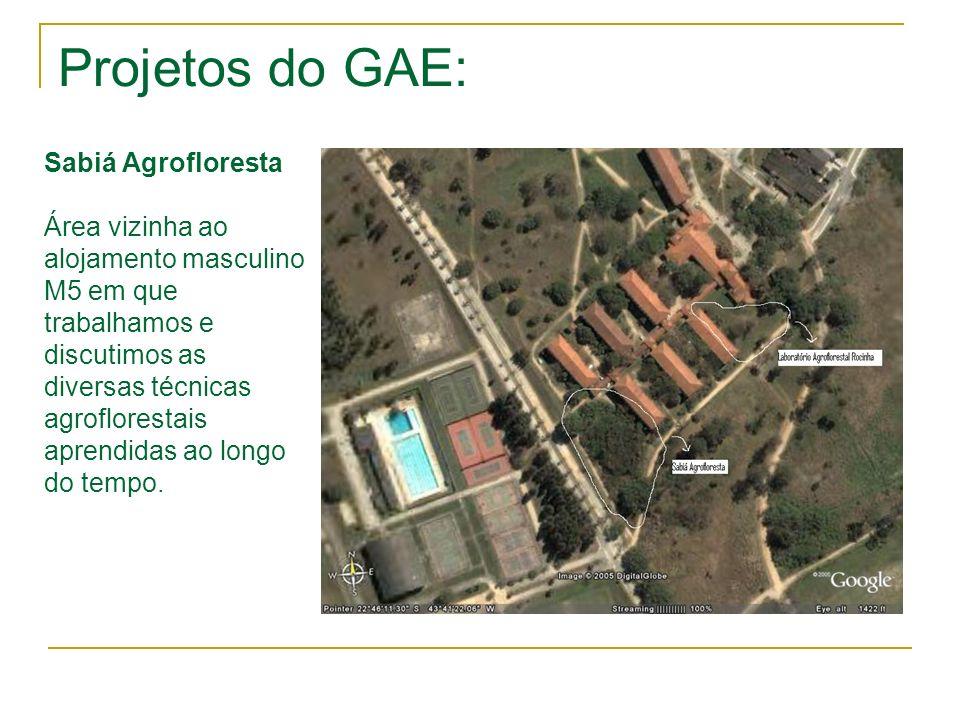 Projetos do GAE: Sabiá Agrofloresta Área vizinha ao alojamento masculino M5 em que trabalhamos e discutimos as diversas técnicas agroflorestais aprend