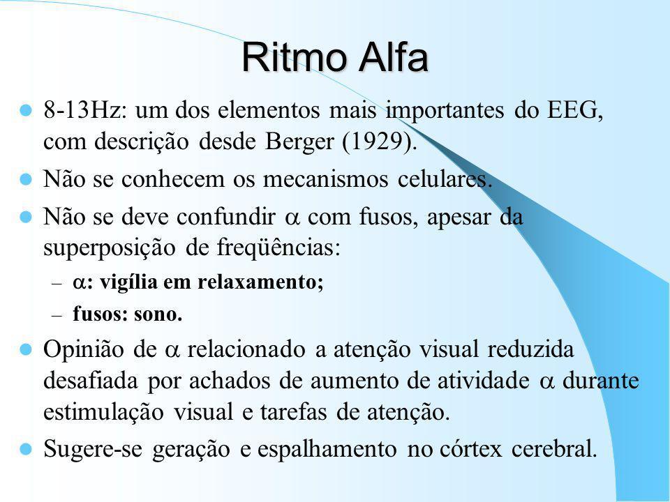 Ritmo Teta Primeiro descrito no hipocampo de coelhos; faixa de 4-7 Hz. Atividade teta normal pobre ou ausente em primatas, sendo negada por alguns aut