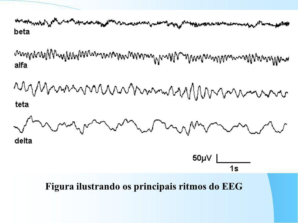 Introdu ç ão ao EEG Ritmos do Eletroencefalograma: – Delta: 0 - 4 Hz; – Teta: 4 - 8 Hz; – Alfa: 8 - 12 Hz; – Beta: 12 - 32 Hz; – Gama: > 32 Hz.