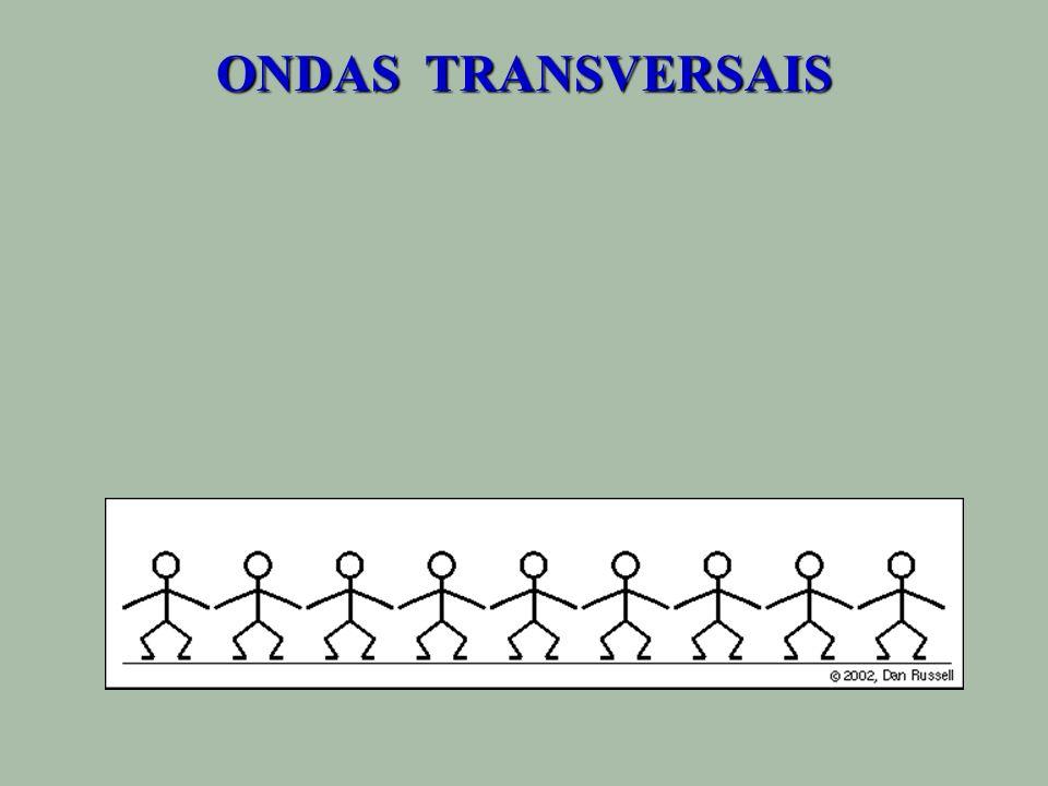 ONDAS TRANSVERSAIS