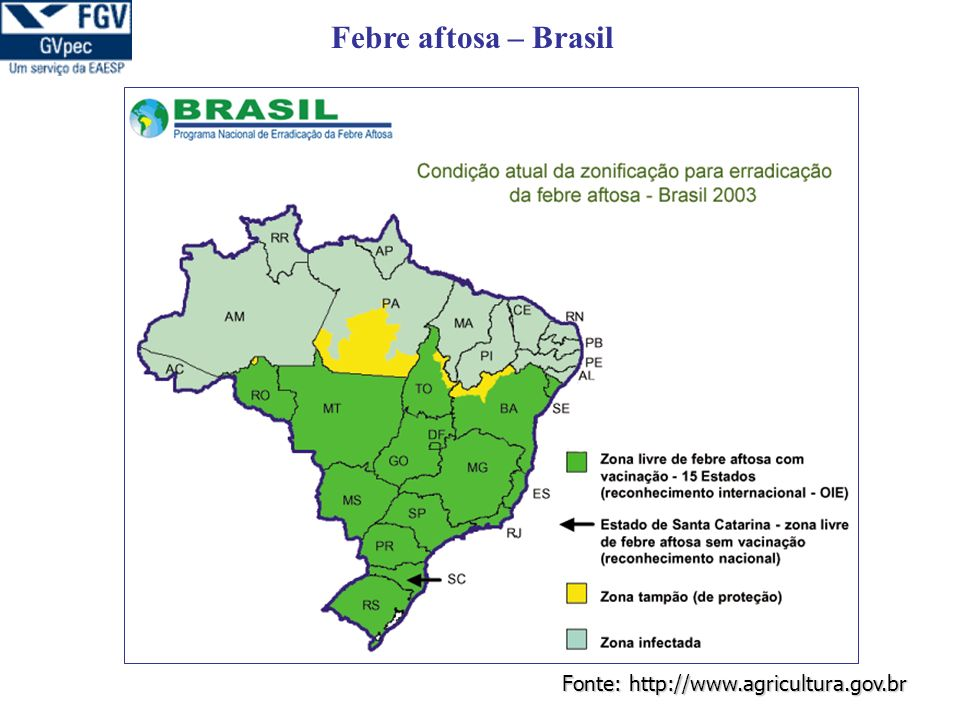 Fonte: http://www.agricultura.gov.br Febre aftosa – Brasil