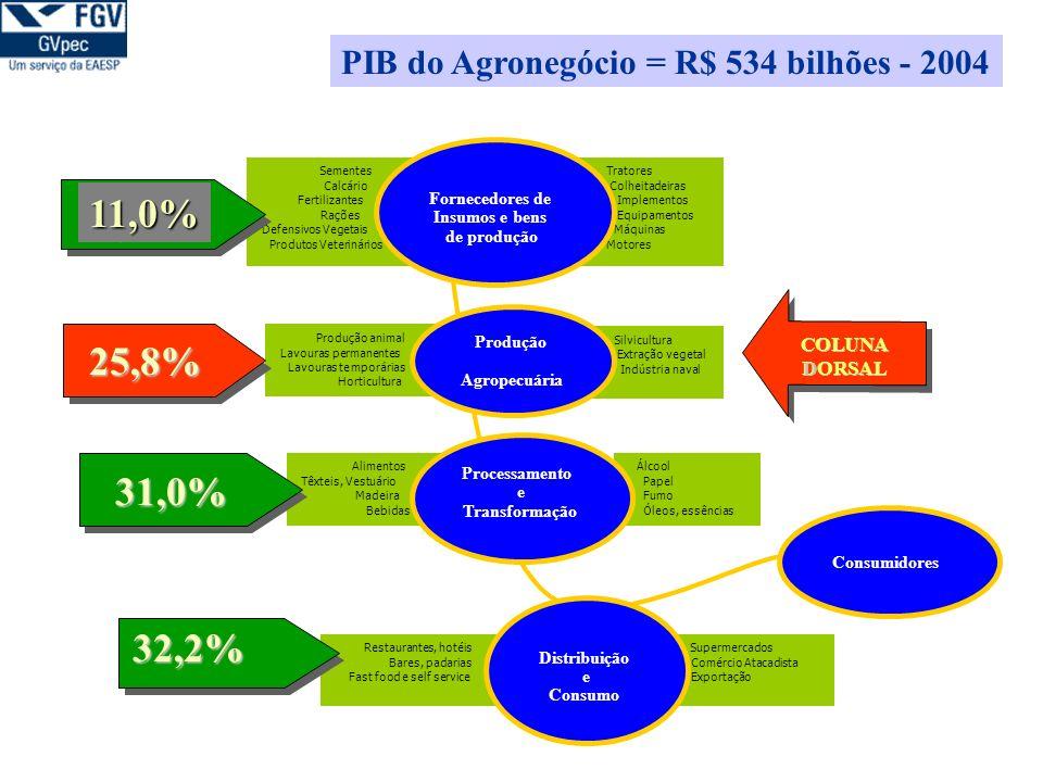 Agronegócio é a fonte de divisa