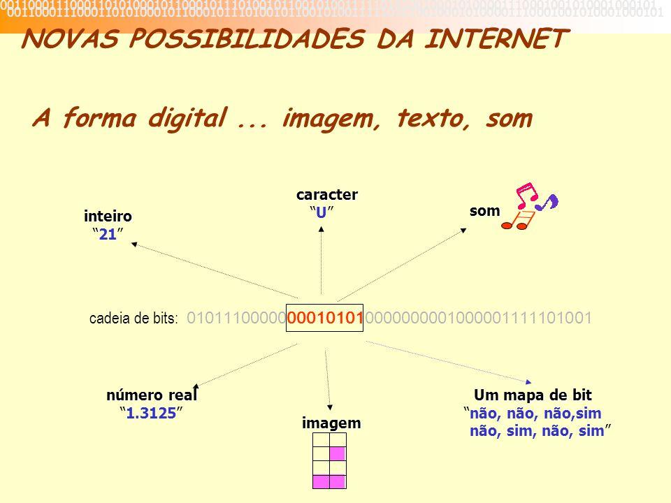 cadeia de bits: 01011100000000101010000000001000001111101001 caracter U som inteiro 21 número real 1.3125 imagem Um mapa de bit Um mapa de bitnão, não, não,sim não, sim, não, sim 001100011100011010100010110001011101001011001010011111010100100010100001110001001010001000101 NOVAS POSSIBILIDADES DA INTERNET A forma digital...