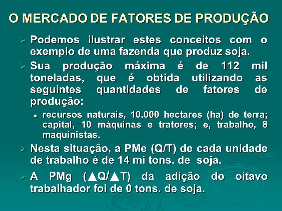 O MERCADO DE FATORES DE PRODUÇÃO Podemos ilustrar estes conceitos com o exemplo de uma fazenda que produz soja. Podemos ilustrar estes conceitos com o