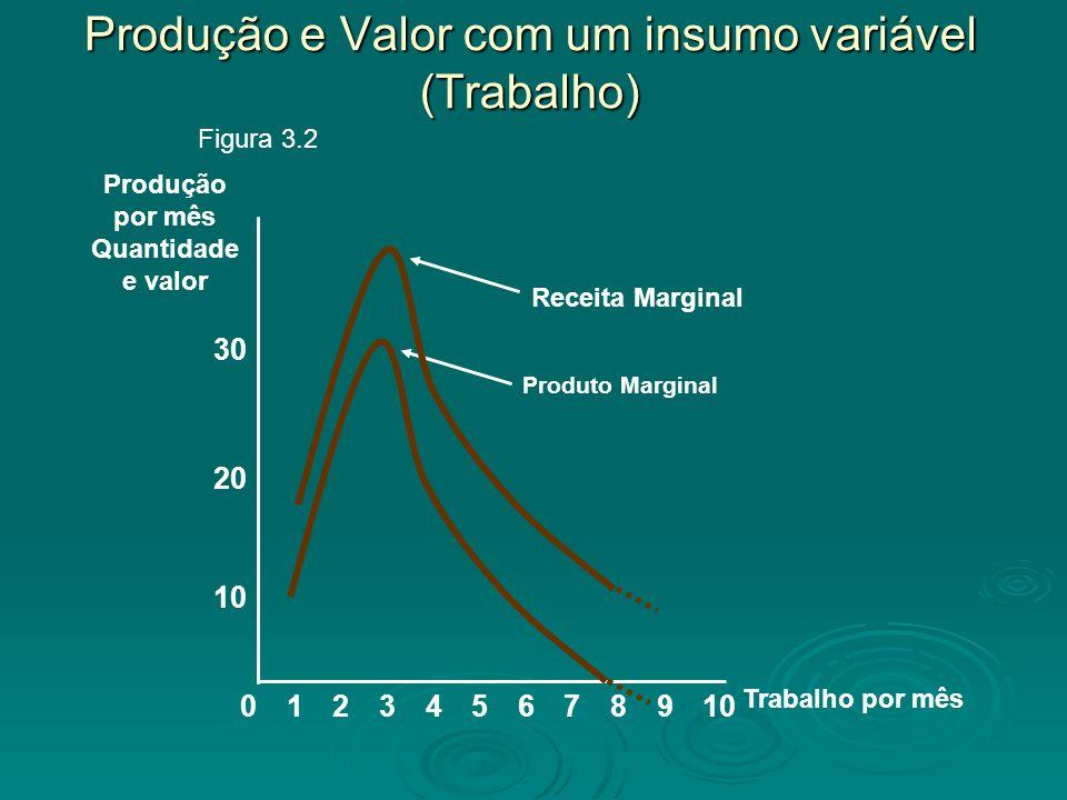 Produção e Valor com um insumo variável (Trabalho) 8 10 20 Produção por mês Quantidade e valor 02345679101 Trabalho por mês 30 Produto Marginal Figura