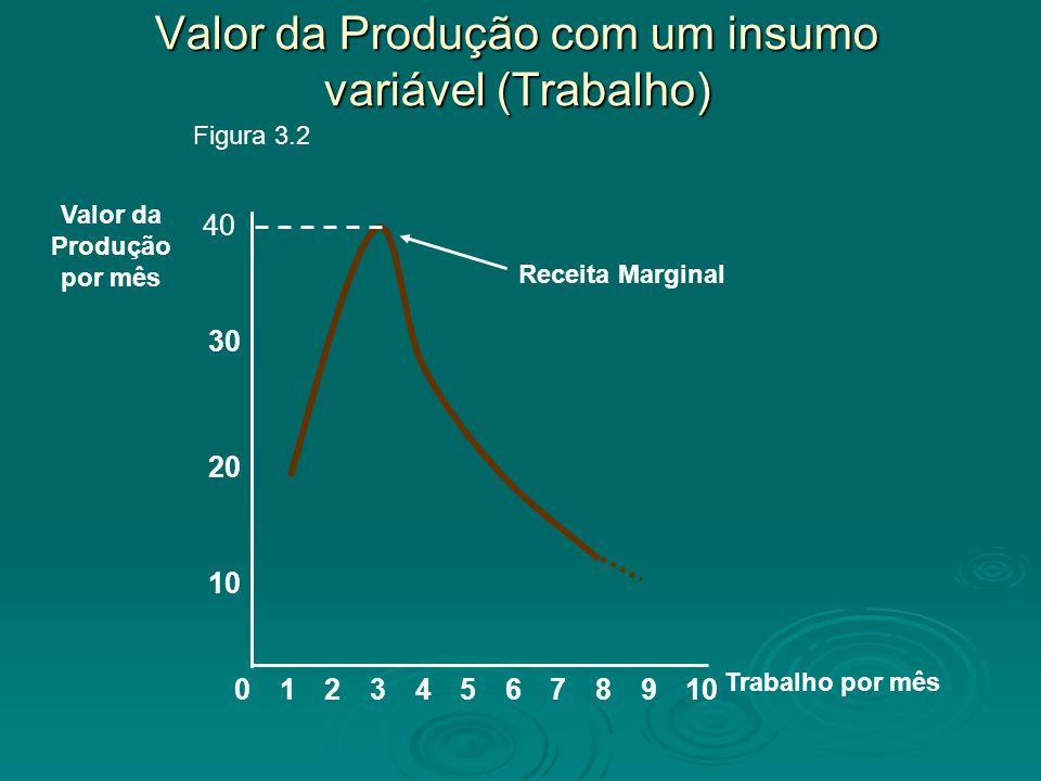 Valor da Produção com um insumo variável (Trabalho) 8 10 20 Valor da Produção por mês 02345679101 Trabalho por mês 30 Figura 3.2 Receita Marginal 40