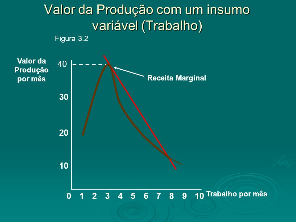 Valor da Produção com um insumo variável (Trabalho) 8 10 20 Valor da Produção por mês 02345679101 Trabalho por mês 30 Figura 3.2 40 Receita Marginal