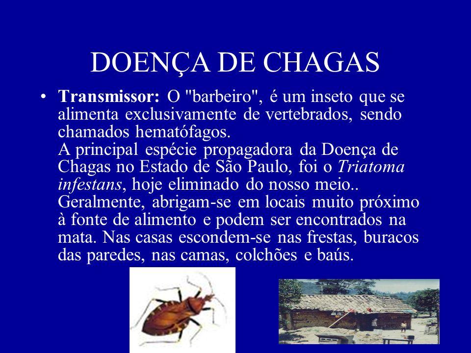 DOENÇA DE CHAGAS Transmissor: O