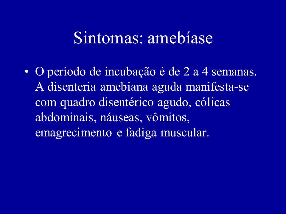 Sintomas: amebíase O período de incubação é de 2 a 4 semanas. A disenteria amebiana aguda manifesta-se com quadro disentérico agudo, cólicas abdominai