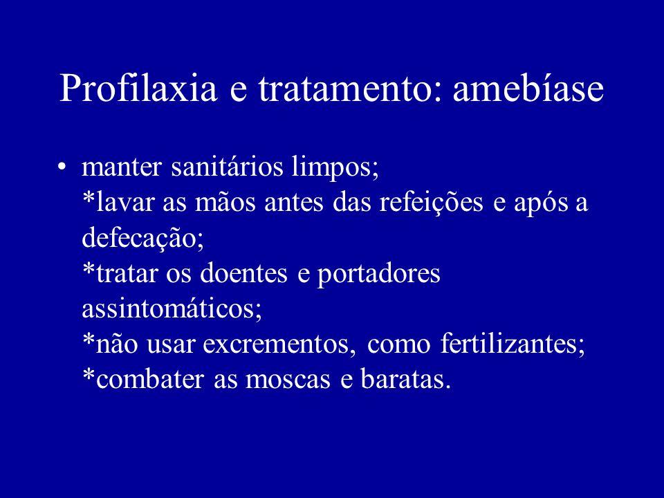 Profilaxia e tratamento: amebíase manter sanitários limpos; *lavar as mãos antes das refeições e após a defecação; *tratar os doentes e portadores ass