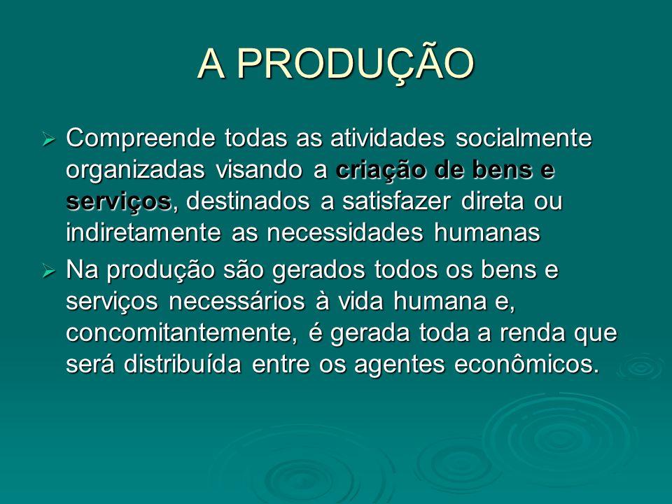 Compreende todas as atividades socialmente organizadas visando a criação de bens e serviços, destinados a satisfazer direta ou indiretamente as necess