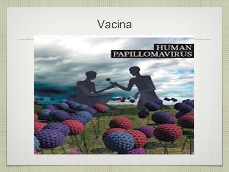 Prevenção primária - Evita a contaminação pelo HPV 1.