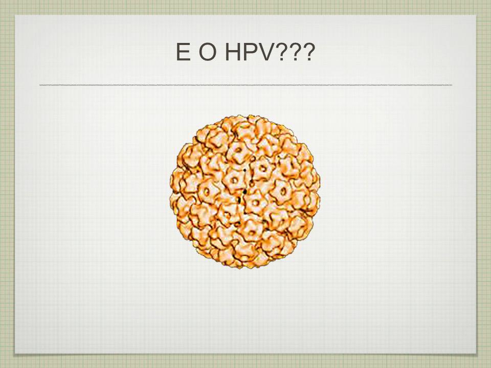 HPV é a sigla de Papilomavírus Humano (do inglês Human Papillomavirus) 1.