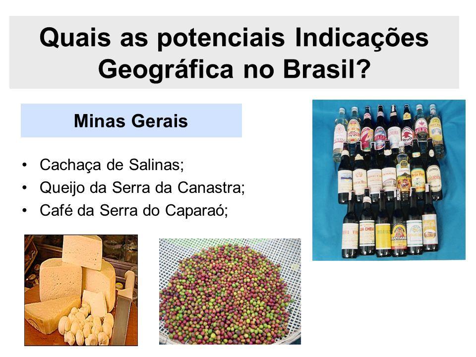 Minas Gerais Quais as potenciais Indicações Geográfica no Brasil? Cachaça de Salinas; Queijo da Serra da Canastra; Café da Serra do Caparaó;
